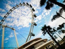 酷航新加坡【聖誕節‧預留機位】自由行套票5天3晚『12月24、26日出發』