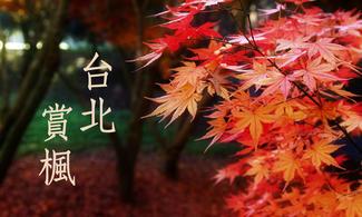 台北、北投、陽明山【溫泉享受 ‧ 賞楓】自由行套票3-31天