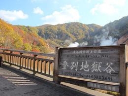 【DIY‧自由組合行程】北海道自由行套票4-31天 (包免費全程pocket wifi租借服務)