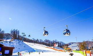 江原道【滑雪渡假村】自由行套票3-31天