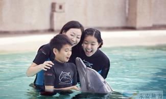 【炎夏玩水】名勝世界·海豚探索連水上探險樂園 │新加坡自由行套票3-31天