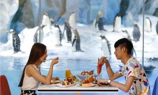 【長隆3大主題酒店+門票.2人同行】珠江客運珠海自由行套票2天~『來回珠海九洲港』