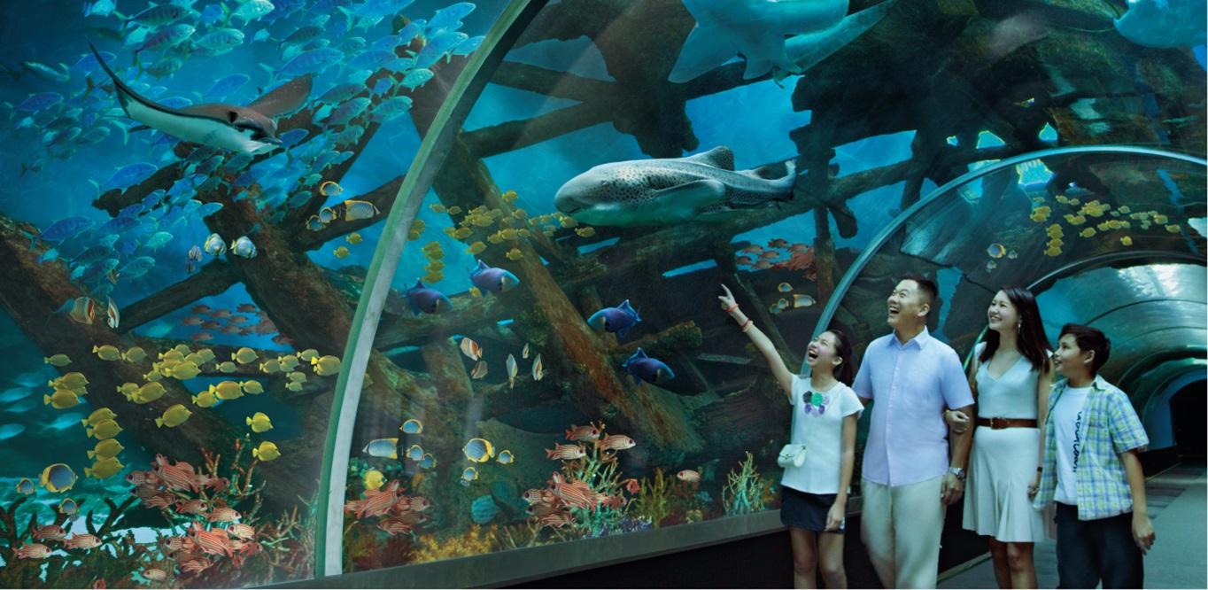 【Fun ‧ 紛樂園】雙景點,雙倍開心!新加坡環球影城™ + S.E.A.海洋館™ 新加坡自由行套票3-31天
