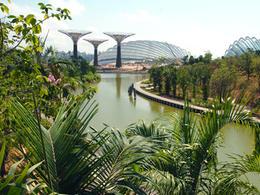 新加坡【濱海灣花園 Gardens by the Bay】自由行套票3-31天 (包 Flower Dome + Cloud Forest 1天門票)