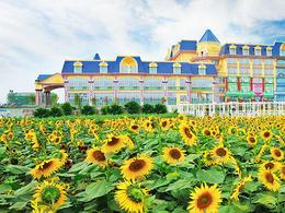 珠江客運廣州【花之戀國際城堡酒店】自由行套票2天