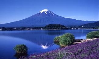 東京【富士山周邊一天遊】自由行套票3-31天 (包免費pocket wifi租借服務)