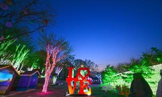 【新蒲點】首爾自由行套票3-31天 (包光明洞穴 + 義王鐵道單車體驗 + 安山星光村Photo land燈節)