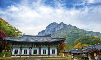 【賞楓之旅】首爾自由行套票3-31天 (包內藏山紅葉一天團)