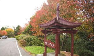 【賞楓・大雪山】台中自由行套票3-31天(包午餐、門票及下午茶)
