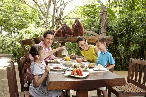 【動物園連野趣早餐】全開放式自然環境,近距離觀賞動物陪你食早餐!│新加坡自由行套票3-31天