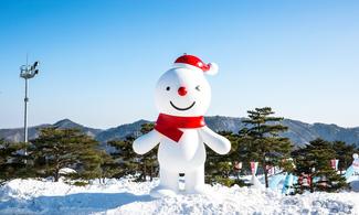 【冰雪世界】包大明Vivaldi Park冰雪王國一日通票 │首爾自由行套票3-31天