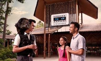 【Fun ‧ 紛樂園】和神奇的夜行動物共度美好的夜晚│包夜間野生動物園(Night Safari)門票 │新加坡自由行套票3-31天