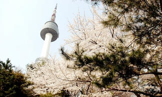 【主題玩樂】包N首爾塔展望臺入埸票│首爾自由行套票3-31天