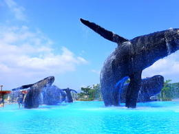 【Fun‧紛樂園】屏東國立海洋生物博物館│包門票、來回墾丁快線│高雄自由行套票 3-31天