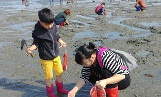 【炎夏玩水】包保寧市摸蜆、海苔製作體驗、開花藝術公園一天遊 │首爾自由行套票3-31天