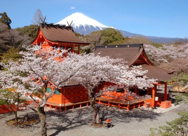 【地道遊】富士山下的忍野八海 │包pocket wifi租借服務│東京自由行套票3-31天