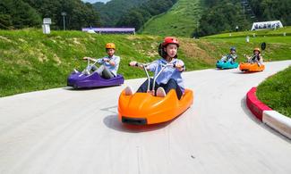 【地道遊】包與草泥馬散步、挑戰斜坡滑車、採有機水果體驗一天遊 │首爾自由行套票3-31天