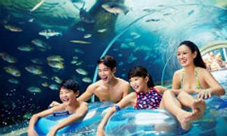 【炎夏玩水】必玩!和2萬隻熱帶魚群一起共遊!│ 聖淘沙名勝世界 - 水上探險樂園一日電子門票 │新加坡自由行套票3-31天