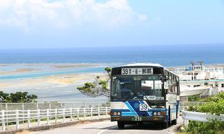 【主題玩樂】1日內任搭沖繩本島指定路線公車│包pocket wifi租借服務│沖繩自由行套票 3-31天