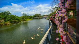 【Fun ‧ 紛樂園】日本唯一動植物園│包pocket wifi租借服務│沖繩自由行套票 3-31天