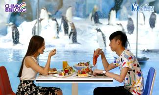 【限時搶購】我要同企鵝食早餐│包海洋王國門票│企鵝主題酒店│金光飛航│珠海自由行套票2-7天『來回澳門氹仔碼頭 』