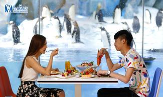 我要同企鵝食早餐│包帝企鵝餐廳自助早餐│企鵝主題酒店│金光飛航│珠海自由行套票2-7天『來回澳門氹仔碼頭 』